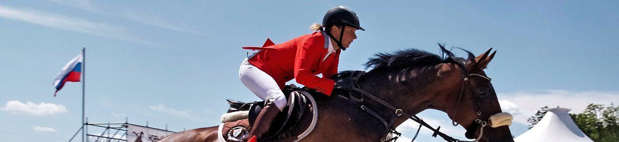 brexit-import-export-horses